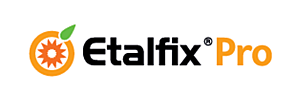 Etalfix Pro  1 Liter Netzmittel