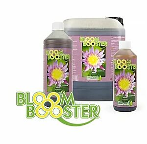 Bloom Booster von Jungle
