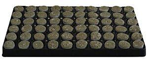Stecklings-Tray, 2 cm, 104 x Steinwolle-Perlite