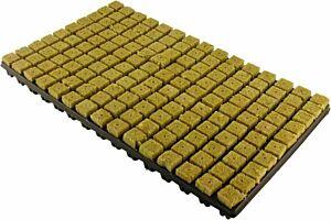 Steinwolle Stecklings-Tray, 2 x 2 cm, 150 Stk.